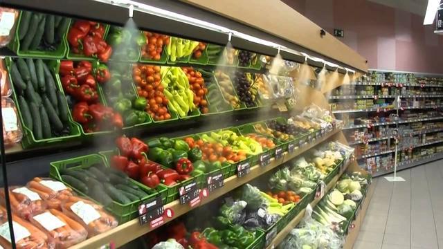 туманообразующие системы для продуктов_овощей_зелени_мяса_рыбы
