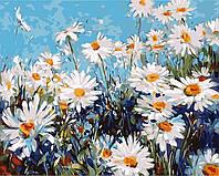 """Картина раскраска по номерам """"Ромашковая поляна"""" набор для рисования"""