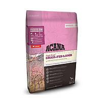 Корм для собак ACANA Grass-Fed Lamb 17 кг