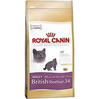 Корм для кошек Royal Canin British Shorthair 34 Adult 10 кг