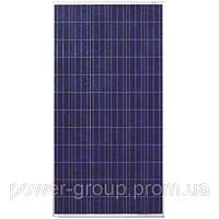 Фотоэлектрический модуль Perlight Solar Солнечная панель Perlight 300W poly 24Вт (PLM-300P-72)