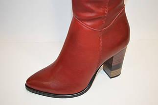 Красные женские сапоги Vanilla, фото 2