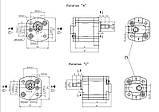 Насос шестерневий  Caproni 00A(C)...X034, фото 2
