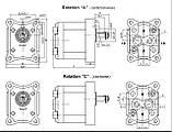 Насос шестерневий Caproni 10A(C)...X055, фото 2