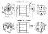 Насос шестеренный Caproni 10A(C)...X131, фото 2
