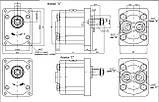Насос шестерневий Caproni 20A(C)...X016W, фото 2