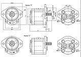 Насос шестерневий Caproni 20A(C)...X085W, фото 2