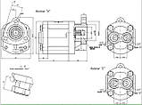 Насос шестеренный Caproni 20A(C)...X192, фото 2