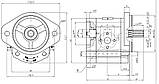 Насос шестерневий Caproni 20A(C)...X167, фото 2
