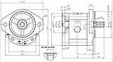 Насос шестеренный Caproni 20A(C)...X574, фото 2