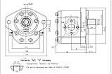 Насос шестерневий Caproni 30A(C)...X237, фото 2