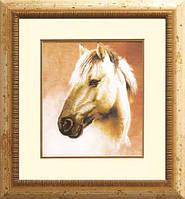 Набор для частичной вышивки крестом РК-007 Лошадь