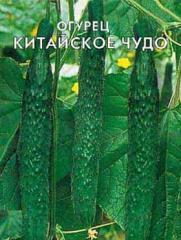"""Семена огурцов """"Китайское чудо""""  1 кг , Польша"""