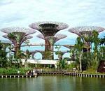 Бангкок, Сінгапур і райський острів Балі!, фото 3