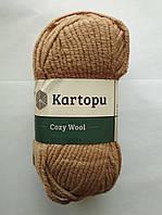 Полушерстяная пряжа Kartopu Cozy Wool 885