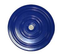 Тренажер Диск Здоровья, диаметр 28 см, металлический