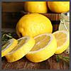 Ароматизатор TPA Lemon