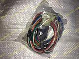 Набор бесконтактной системы зажигания (БСЗ) Ваз 2101 Balaton, фото 7