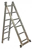 Лестница универсальная Кентавр 2х12