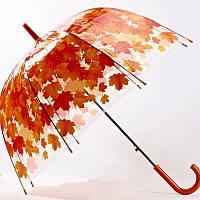 Зонт-трость прозрачный Листья, оранжевый