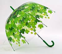 Зонт-трость прозрачный Листья, зеленый