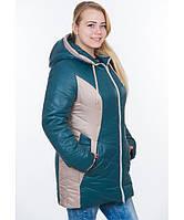 Куртка зимняя женская БАТАЛ № 26.2 (р. 58-64) цвета разные
