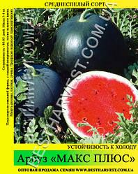 Семена арбуза «Макс Плюс» 0.5 кг