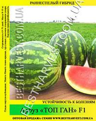 Семена арбуза «Топ Ган» F1 0.5 кг