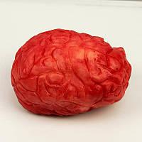 Кровавый мозг 191017-020