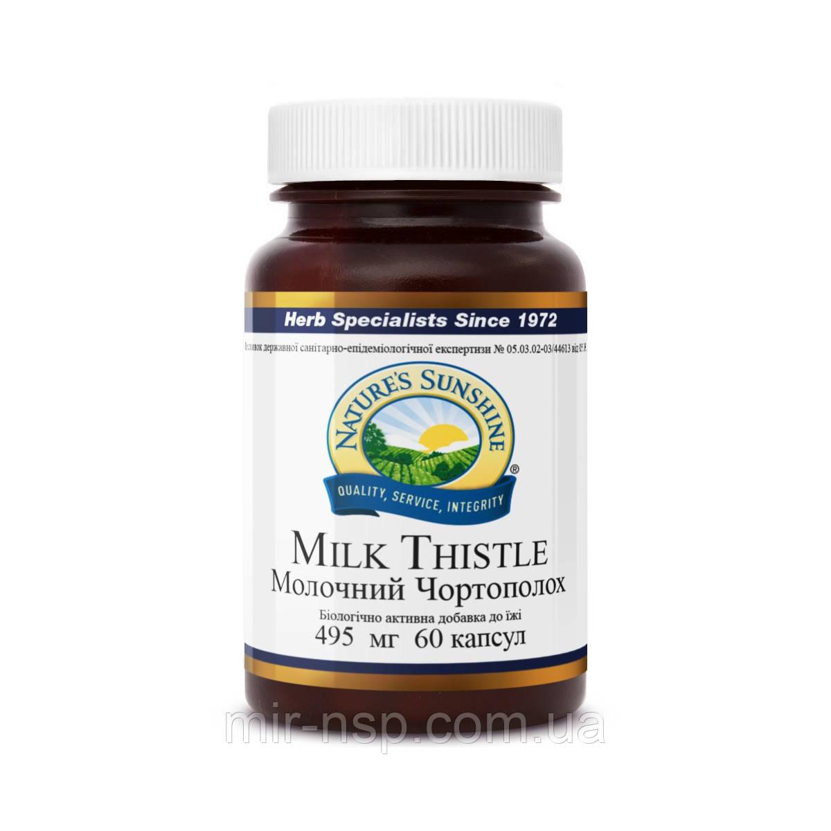 Милк Тисл (Milk Thistle, Молочный Чертополох, расторопша бад, силимарин, лечение печени) NSP