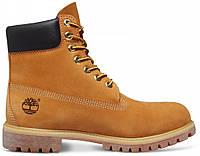 Мужские зимние ботинки Timberland Classic 6-inch Premium С МЕХОМ (зимние Тимберленд) желтые