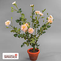 Роза (90 см)