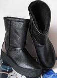 Marco зимние женские теплые угги! сапоги ботинки уги взуття Ugg кожа , фото 2