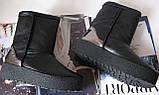 Marco зимние женские теплые угги! сапоги ботинки уги взуття Ugg кожа , фото 3