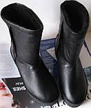 Marco зимние женские теплые угги! сапоги ботинки уги взуття Ugg кожа , фото 6