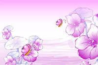 Гели однофазные