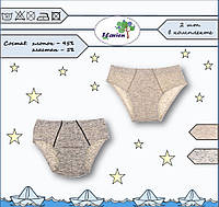 Трусы-плавки для мальчика, меланж, комплект 2 шт, 8002