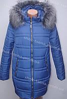 Красивая теплая зимняя куртка на синтепоне с мехом  синяя