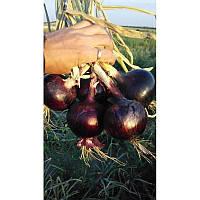 Семена лука Зен (1003) F1 \ Zen (1003) F1 100.000 семян Esasem