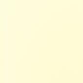 Экономпанель ДСП 18 Ваниль 1301