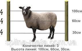 Электропастух Corral NA200 для овец (комплект на 500 м в 3 линии проводника)