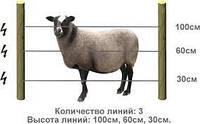 Электропастух для овец (комплект на периметр 500 м.)