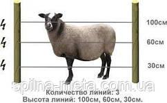 Электропастух Corral для овец (комплект на периметр 500 м.)