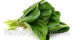 Семена шпината Клиппер F1 \  Klipper F1 50.000 семян Sakata