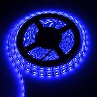 LED-лента 5050 60 диодов BLUE IP65 LKLed