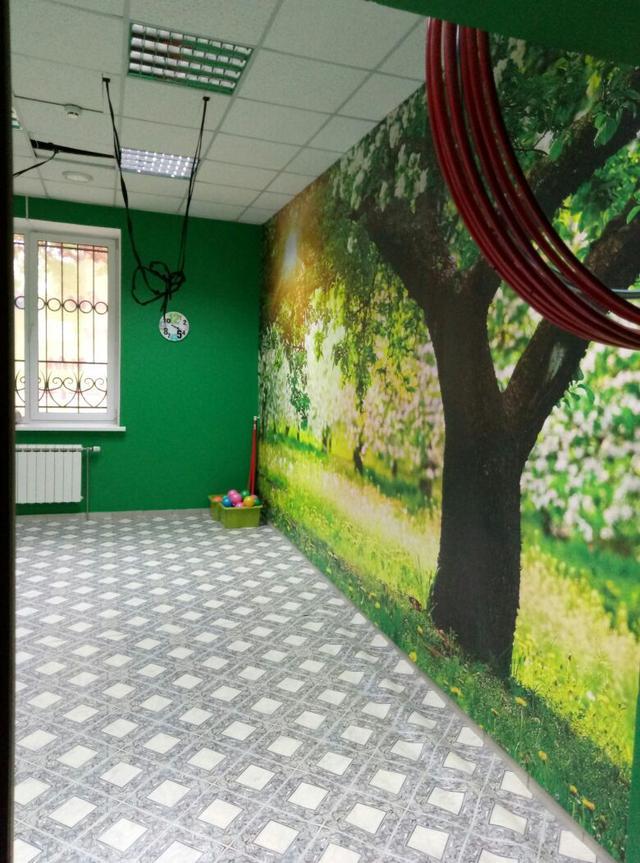 Фото зала для курсов по фитнесу, флай йоге и для подвесного тренинга в школе Олимпия