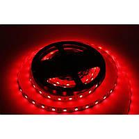 LED-лента 5050 60 диодов IP20 RED
