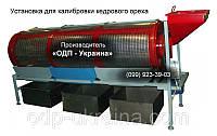 Установка для калибровки кедрового ореха барабанного типа, фото 1