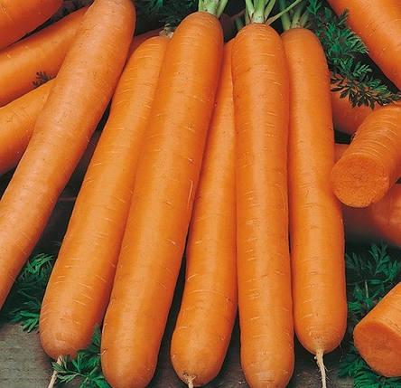 Семена моркови Байон F1 5000 шт, Bejo Zaden, фото 2