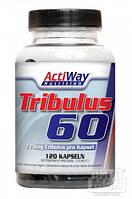 Tribulus-60 120 caps